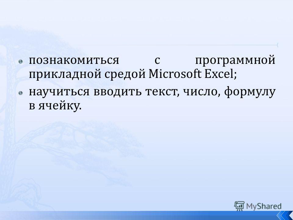 познакомиться с программной прикладной средой Microsoft Excel; научиться вводить текст, число, формулу в ячейку.