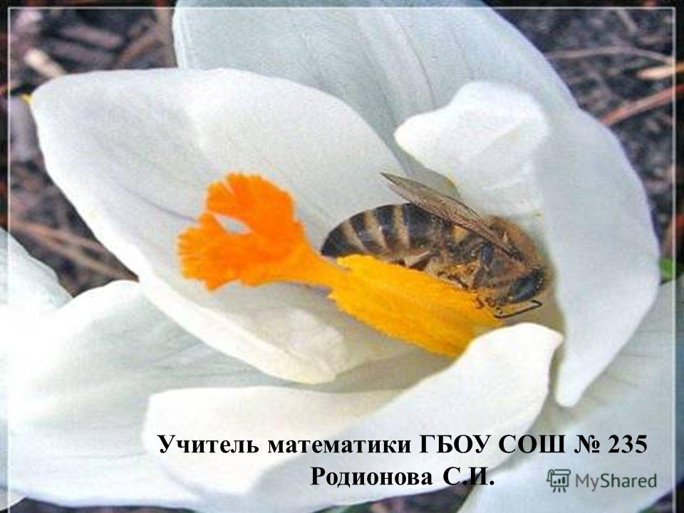 Учитель математики ГБОУ СОШ 235 Родионова С.И.