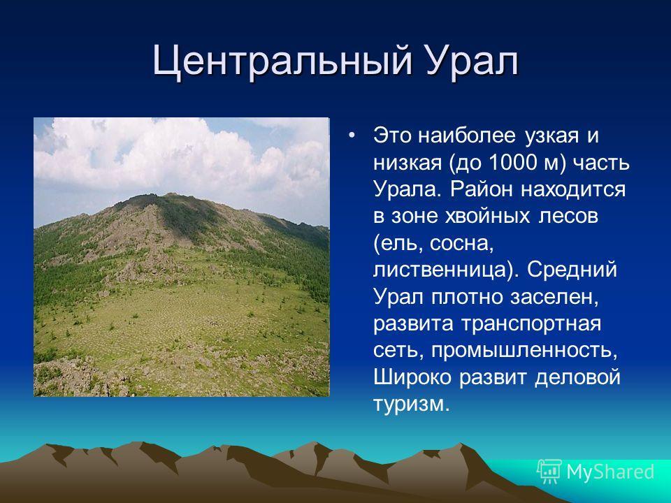 Центральный Урал Это наиболее узкая и низкая (до 1000 м) часть Урала. Район находится в зоне хвойных лесов (ель, сосна, лиственница). Средний Урал плотно заселен, развита транспортная сеть, промышленность, Широко развит деловой туризм.