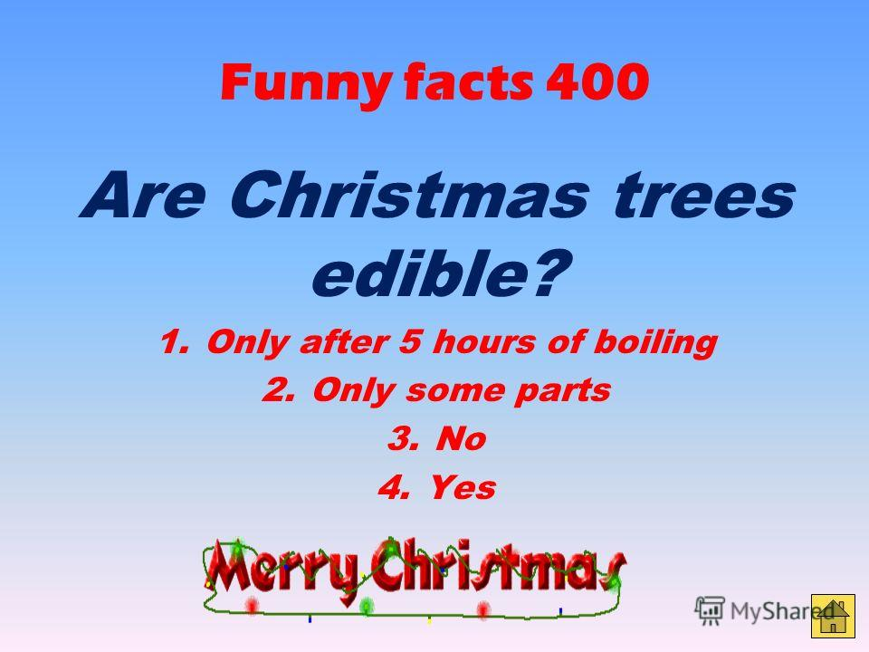 Funny facts 300 Which of these would you NOT see on the top of a Christmas tree? 1. An angel 2. A star 3. Santa Claus 4. A fairy