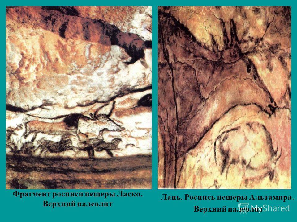Фрагмент росписи пещеры Ласко. Верхний палеолит Лань. Роспись пещеры Альтамира. Верхний палеолит