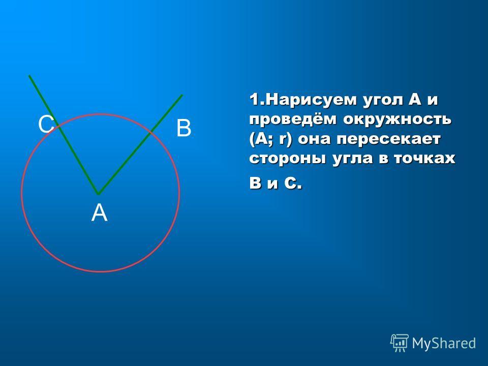 1. Нарисуем угол A и проведём окружность (A; r) она пересекает стороны угла в точках В и С. С А В