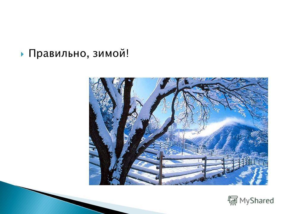 Правильно, зимой!