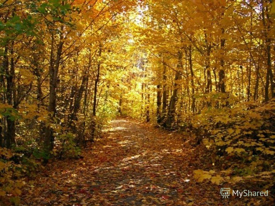 Сценка золотая осень для старшеклассников