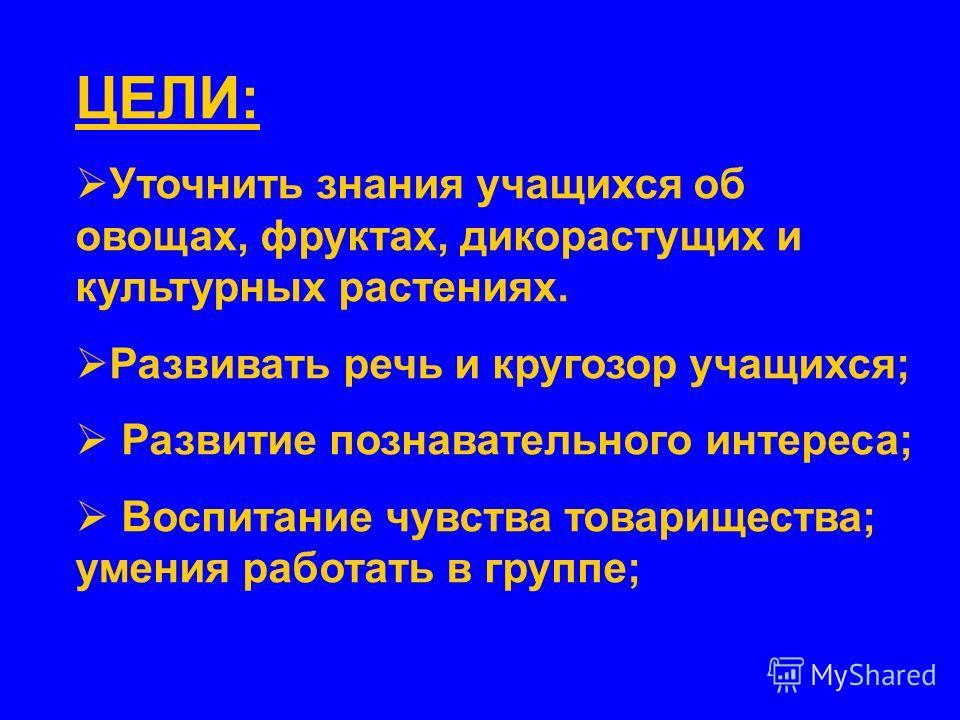 2009 Урок – игра по «Окружающему миру» 1 класс Автор: Яковлева Е.В., учитель начальных классов МОУ «Лахденпохская средняя школа»