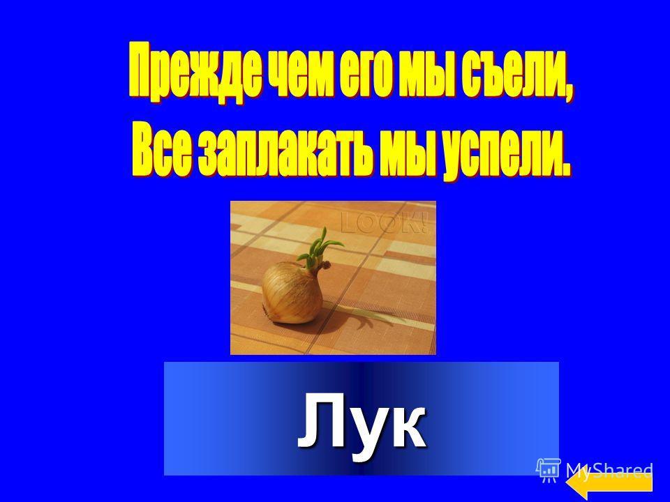 10 20 30 40 50 10 20 30 40 50 10 20 30 40 50 10 20 30 40 50 Мы растём Мы растём на грядке на грядке Деревья Отгадай-ка Найди лишнее