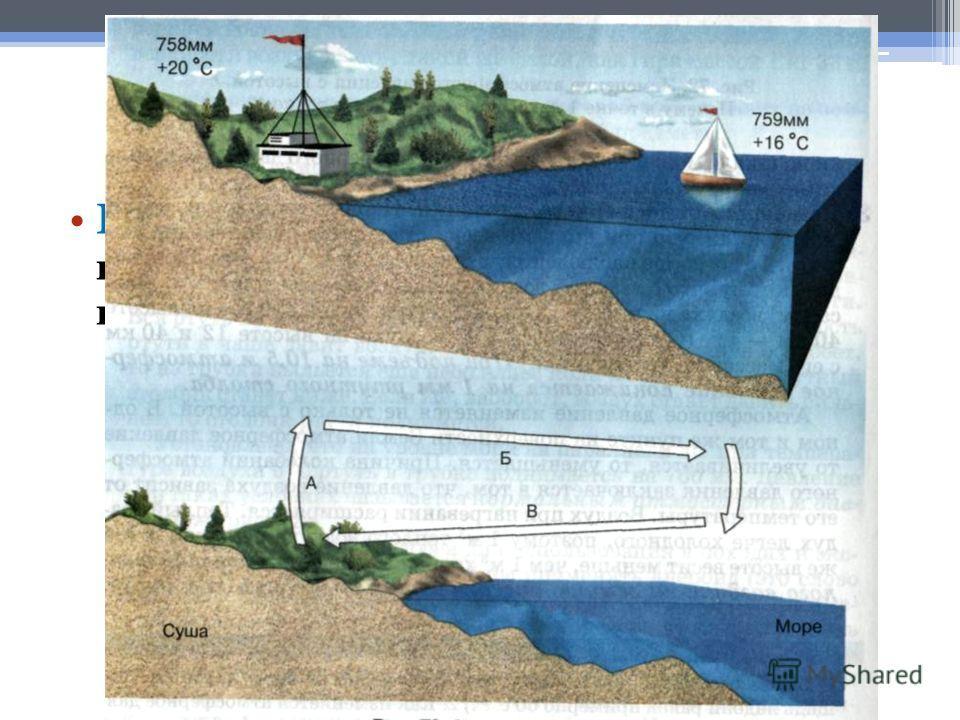 Виды ветров : Бризы - это ветры, возникающие на границе суши и моря, меняющие направление в течение суток.