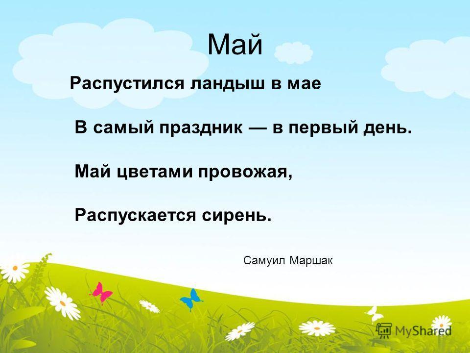 Май Распустился ландыш в мае В самый праздник в первый день. Май цветами провожая, Распускается сирень. Самуил Маршак