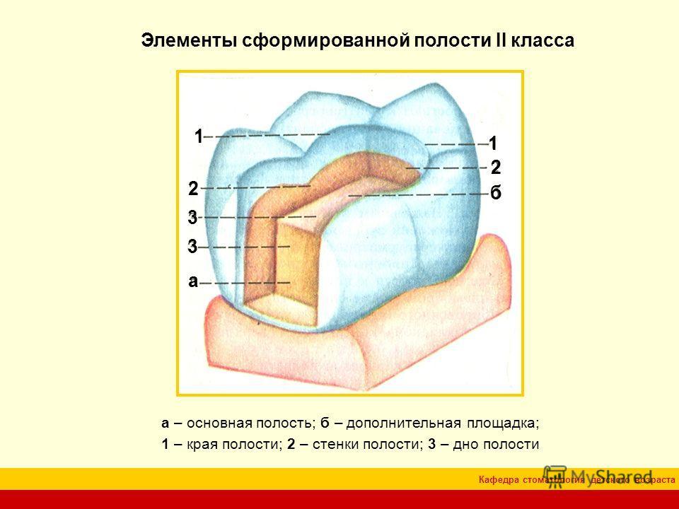 Кафедра стоматология детского возраста Элементы сформированной полости II класса а – основная полость; б – дополнительная площадка; 1 – края полости; 2 – стенки полости; 3 – дно полости а б 1 1 2 2 3 3