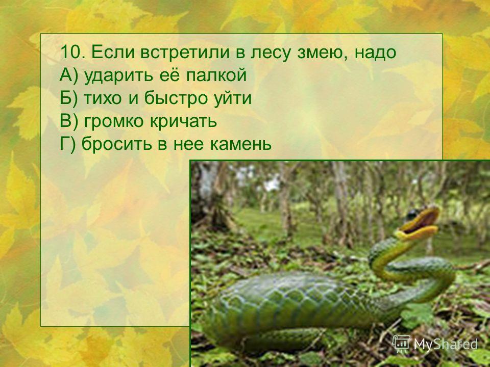 10. Если встретили в лесу змею, надо А) ударить её палкой Б) тихо и быстро уйти В) громко кричать Г) бросить в нее камень