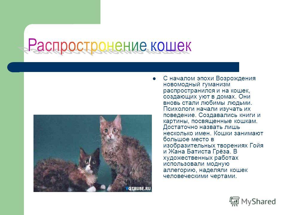 С началом эпохи Возрождения новомодный гуманизм распространился и на кошек, создающих уют в домах. Они вновь стали любимы людьми. Психологи начали изучать их поведение. Создавались книги и картины, посвященные кошкам. Достаточно назвать лишь нескольк