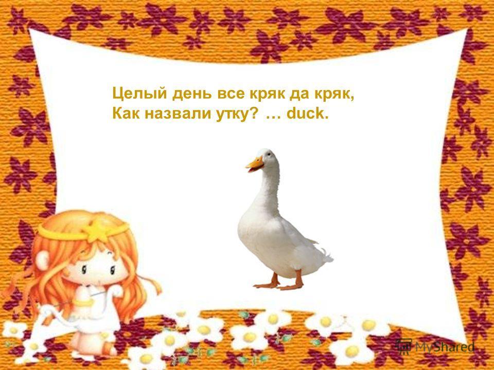 Целый день все кряк да кряк, Как назвали утку? … duck.