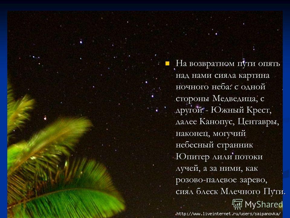 На возвратном пути опять над нами сияла картина ночного неба: с одной стороны Медведица, с другой - Южный Крест, далее Канопус, Центавры, наконец, могучий небесный странник Юпитер лили потоки лучей, а за ними, как розово-палевое зарево, сиял блеск Мл