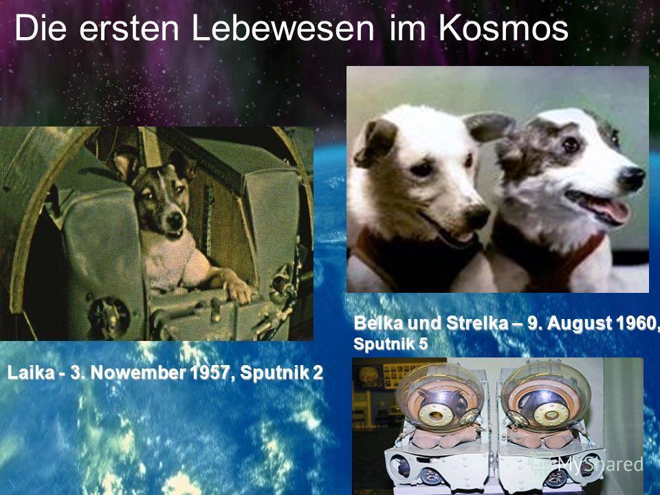 Sputnik 1 leitete das Zeitalter des Raumfluges ein. Die erste Scwalbe im Kosmos, der Sputnik, bliebt nicht lange allein. Im November 1957 folgten ihm der zweite und im Mai 1958 der dritte Sputnik. Das Jahr 1959 war durch neue Siege im Weltraum gekrön