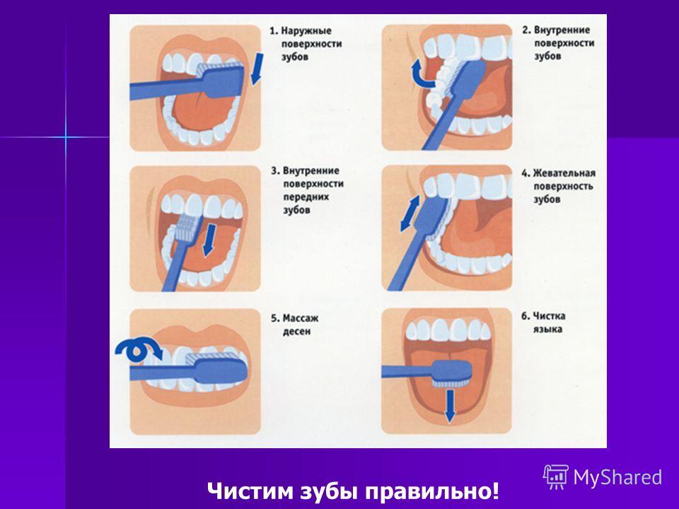 Чистим зубы правильно!