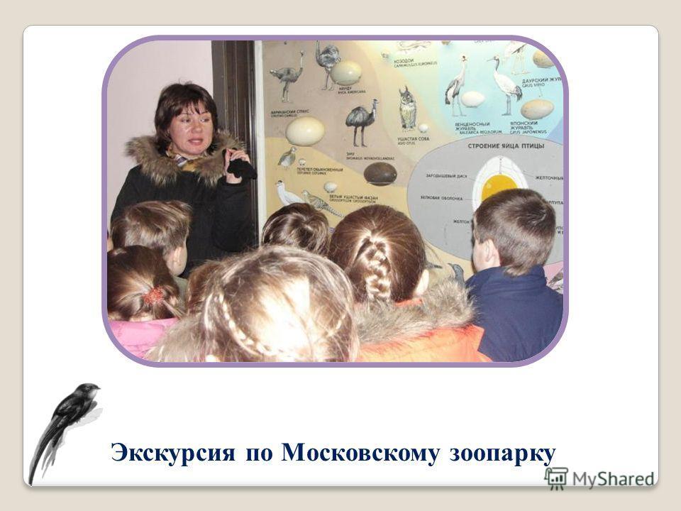 Экскурсия по Московскому зоопарку