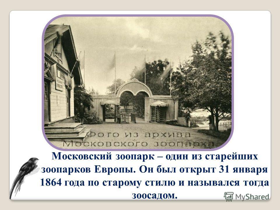 Московский зоопарк – один из старейших зоопарков Европы. Он был открыт 31 января 1864 года по старому стилю и назывался тогда зоосадом.