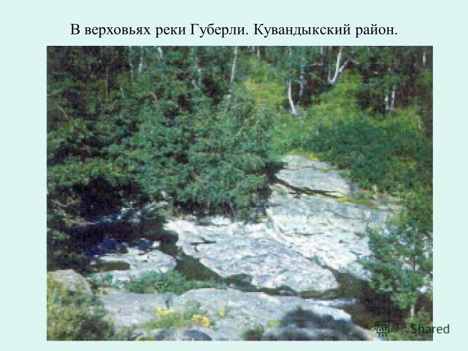 Река Сакмара - излюбленное место отдыха оренбуржцев. Кувандыкский район.