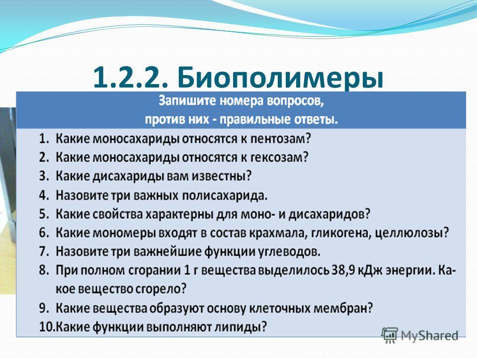 1.2.2. Биополимеры
