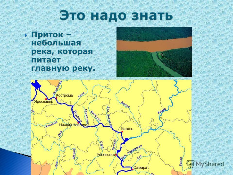 Приток – небольшая река, которая питает главную реку. Приток – небольшая река, которая питает главную реку.