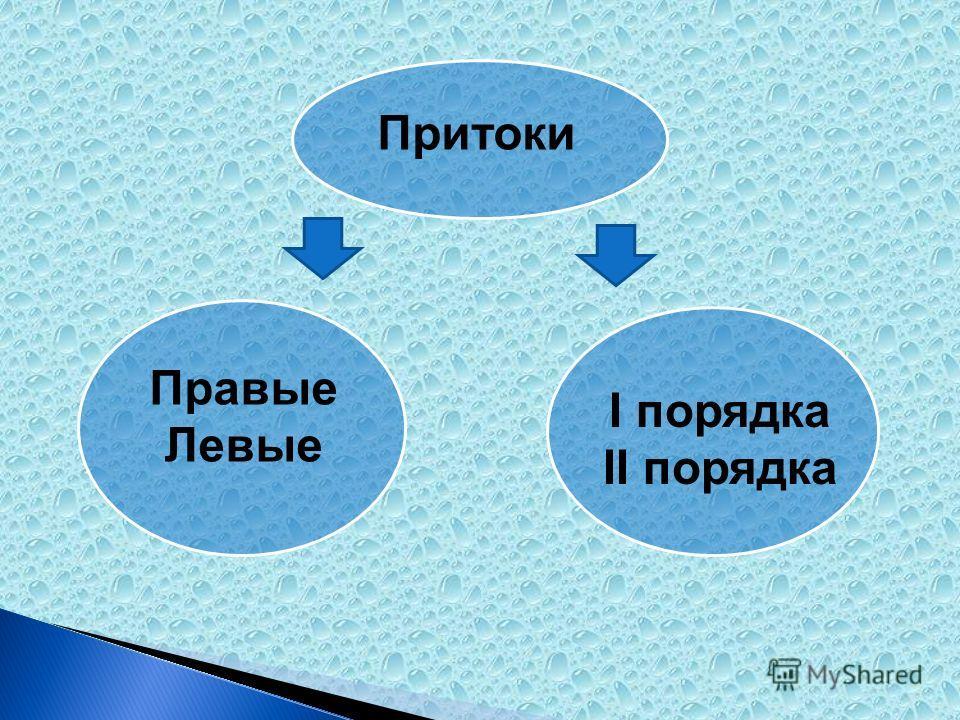 Притоки Правые Левые I порядка II порядка