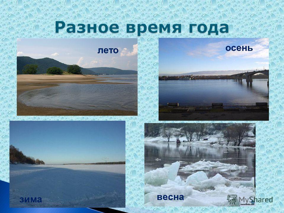 лето зима осень весна