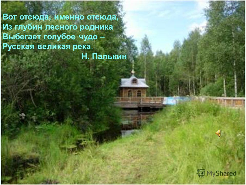 Вот отсюда, именно отсюда, Из глубин лесного родника Выбегает голубое чудо – Русская великая река. Н. Палькин