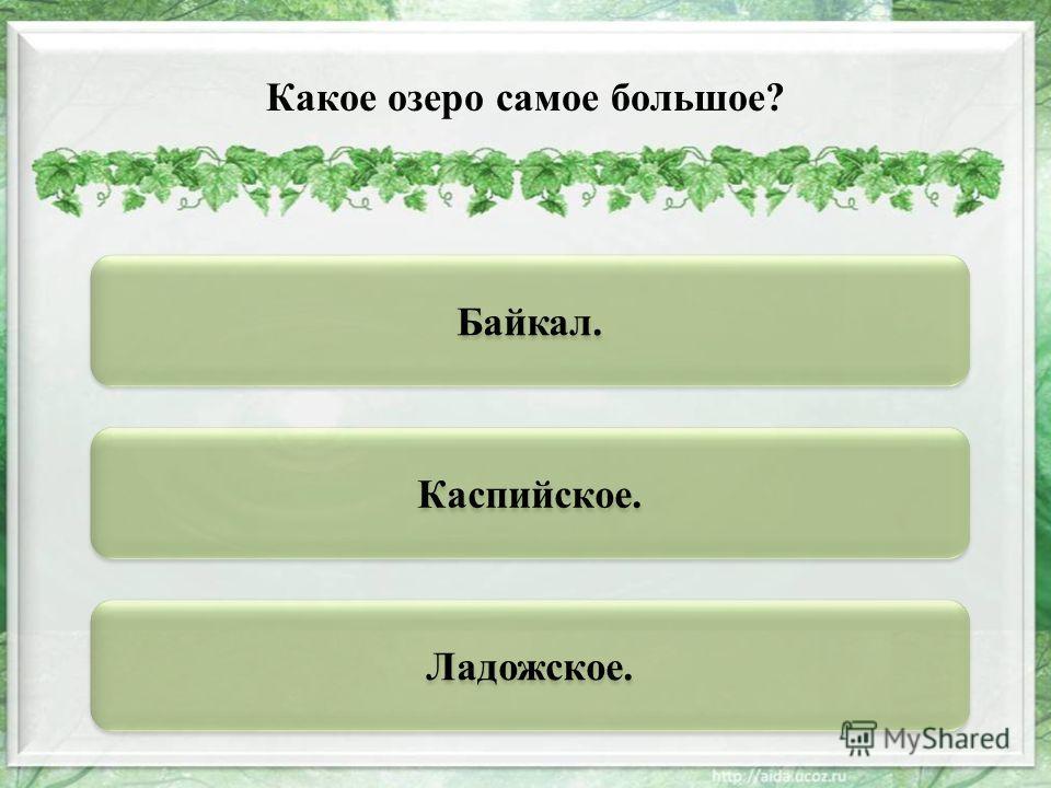 Байкал. Каспийское. Ладожское. Какое озеро самое большое?