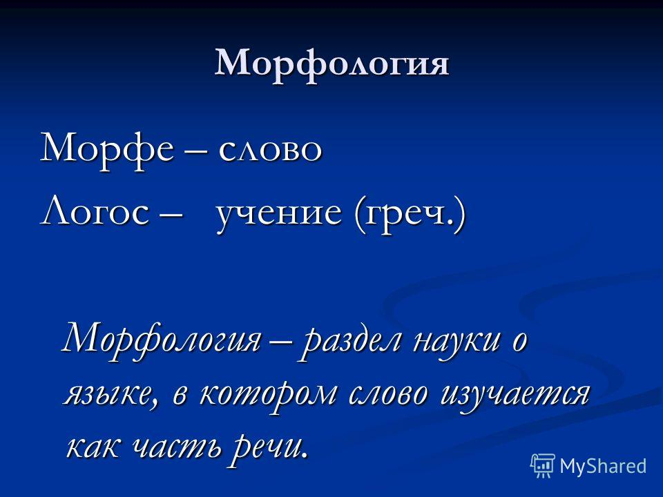 Морфология. Грамматика.