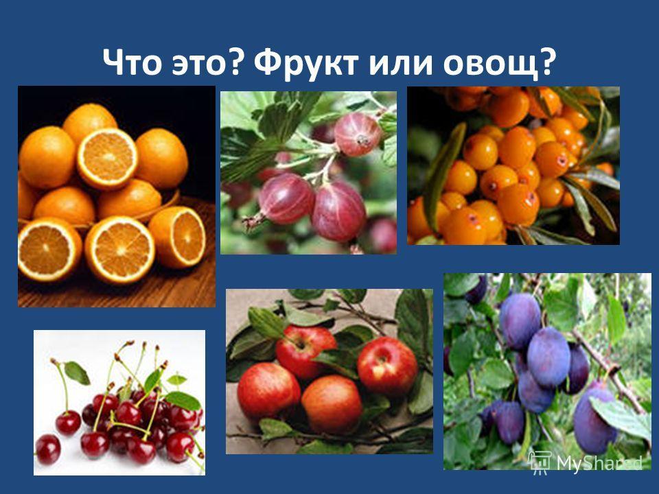 На уроке мы узнаем: Какие плодовые и ягодные культуры растут в саду? Какие есть виды плодовых культур? Как размножаются растения сада?