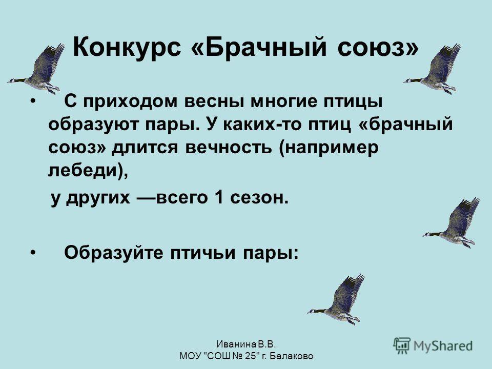 Иванина В.В. МОУ СОШ 25 г. Балаково Дятел