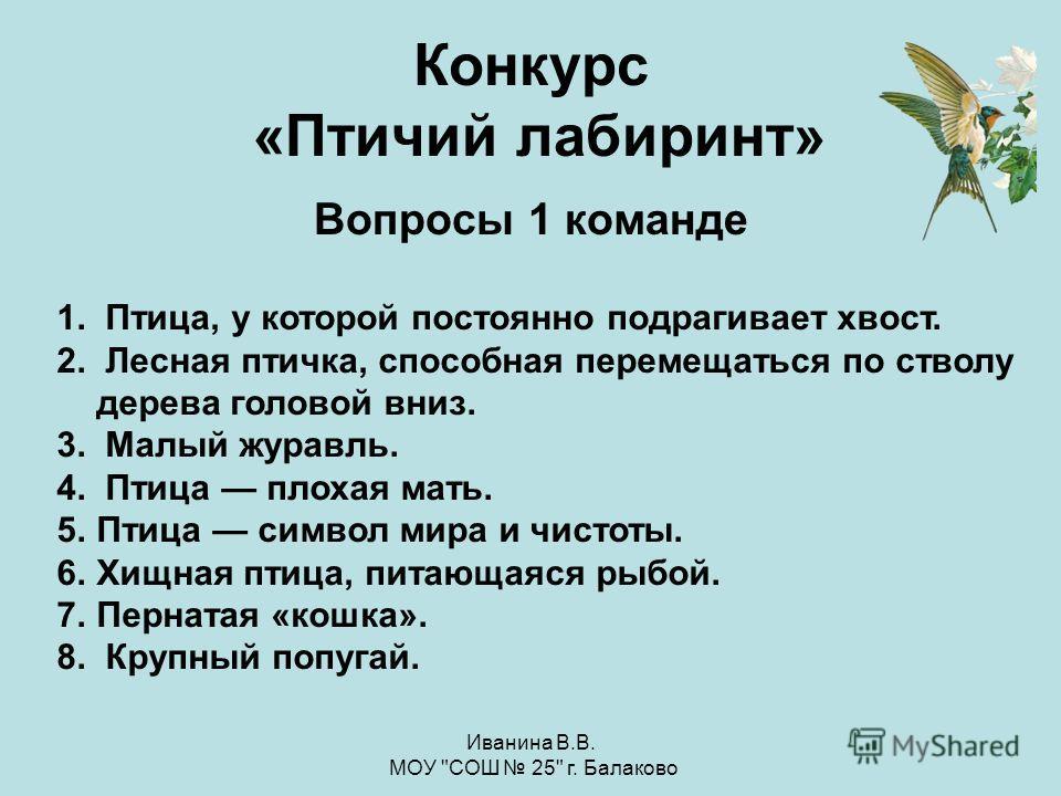 Иванина В.В. МОУ СОШ 25 г. Балаково Зарянка Дятел
