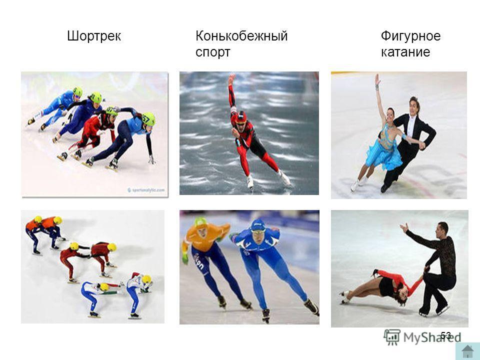 Шортрек Конькобежный спорт Фигурное катание 53