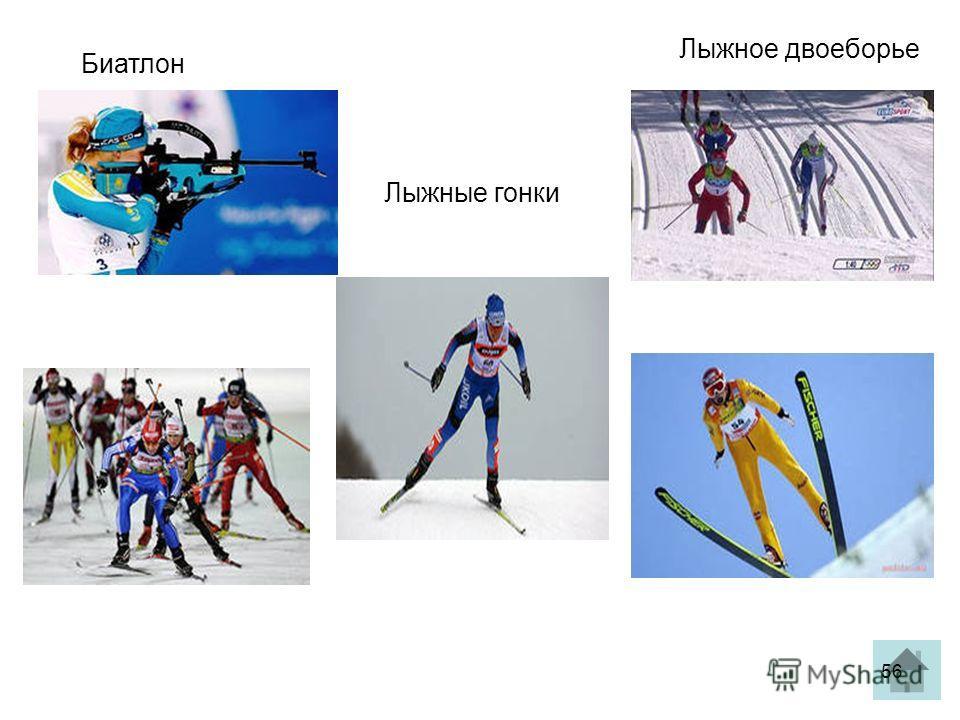Биатлон Лыжные гонки Лыжное двоеборье 56