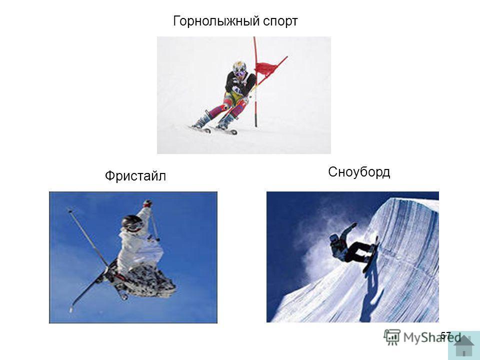 Горнолыжный спорт Фристайл Сноуборд 57