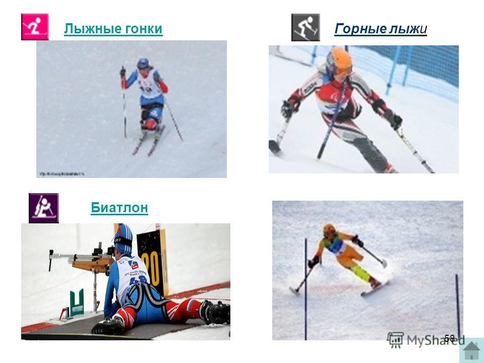 Лыжные гонки Биатлон Горные лыжи 58