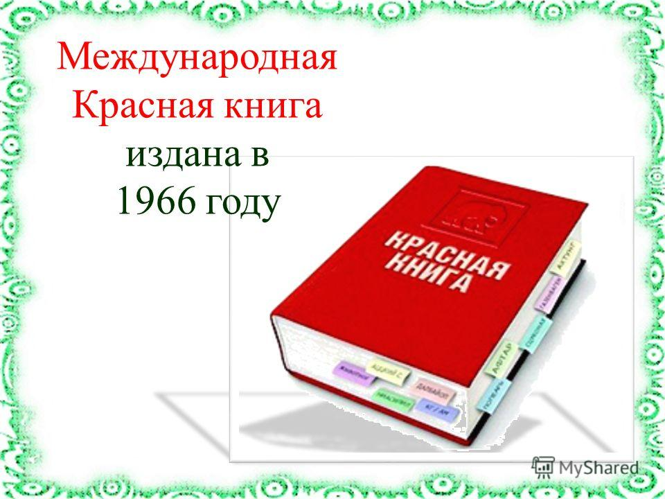 Международная Красная книга издана в 1966 году