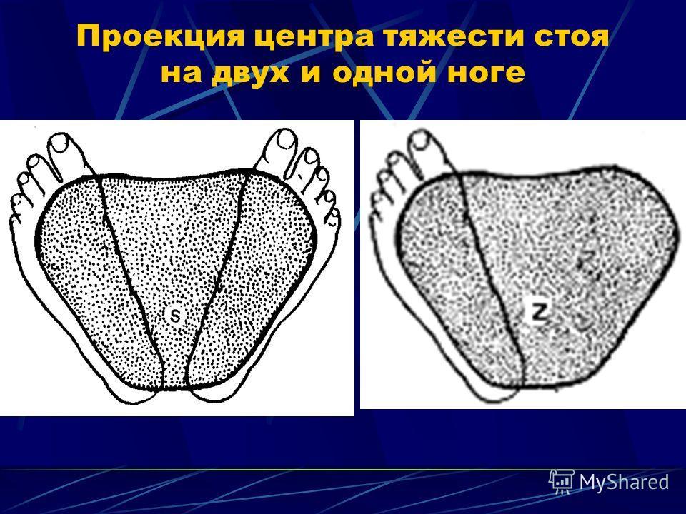 Проекция центра тяжести стоя на двух и одной ноге