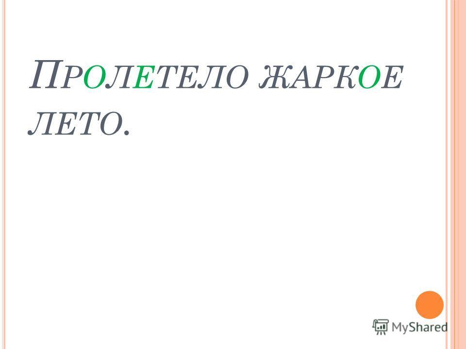 П РОЛЕТЕЛО ЖАРКОЕ ЛЕТО.