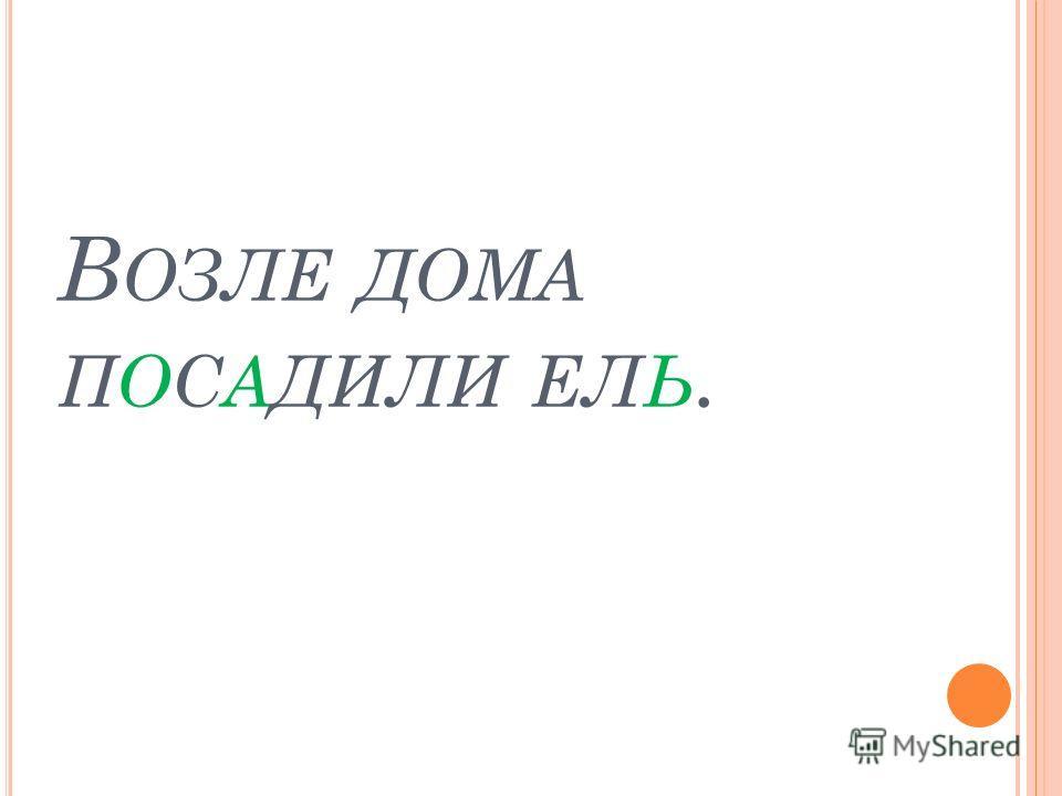 В ОЗЛЕ ДОМА ПОСАДИЛИ ЕЛЬ.