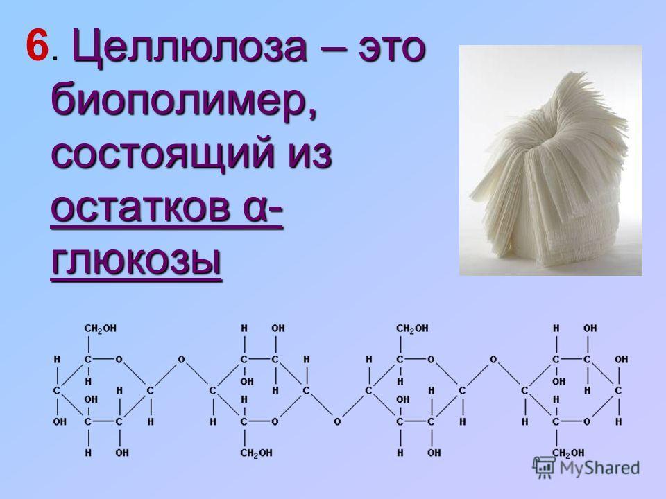 Целлюлоза – это биополимер, состоящий из остатков α- глюкозы 6. Целлюлоза – это биополимер, состоящий из остатков α- глюкозы