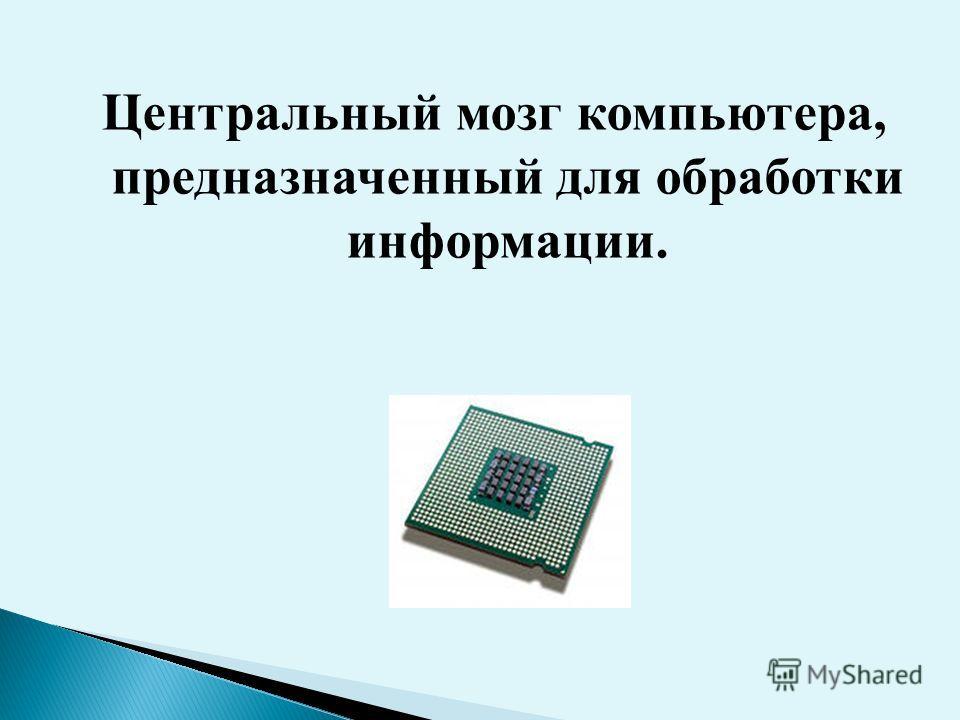 Центральный мозг компьютера, предназначенный для обработки информации.