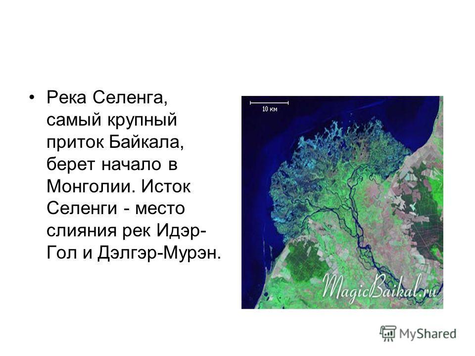 Река Селенга, самый крупный приток Байкала, берет начало в Монголии. Исток Селенги - место слияния рек Идэр- Гол и Дэлгэр-Мурэн.