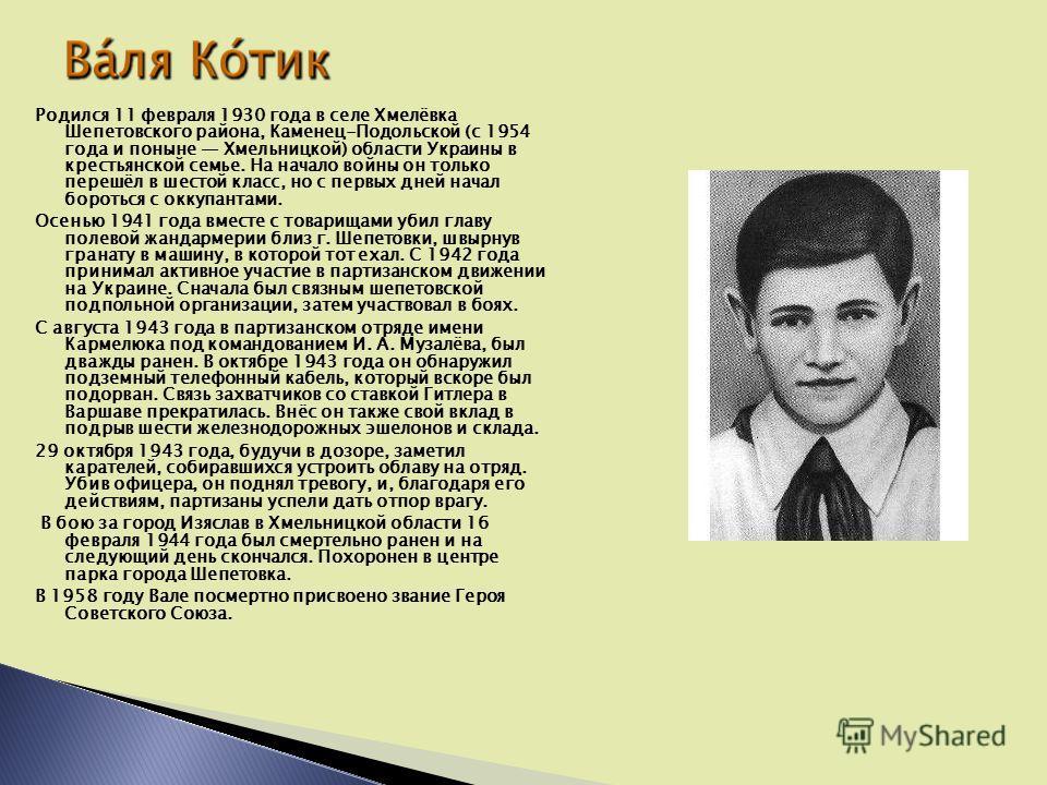 Родился 11 февраля 1930 года в селе Хмелёвка Шепетовского района, Каменец-Подольской (с 1954 года и поныне Хмельницкой) области Украины в крестьянской семье. На начало войны он только перешёл в шестой класс, но с первых дней начал бороться с оккупант