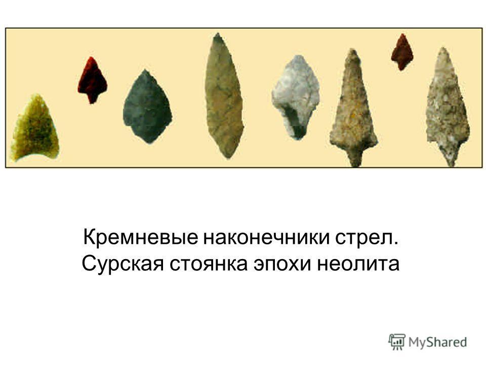 Кремневые наконечники стрел. Сурская стоянка эпохи неолита