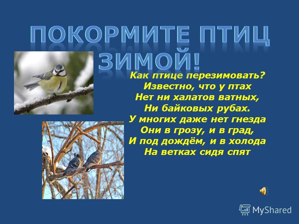 Как птице перезимовать? Известно, что у птах Нет ни халатов ватных, Ни байковых рубах. У многих даже нет гнезда Они в грозу, и в град, И под дождём, и в холода На ветках сидя спят