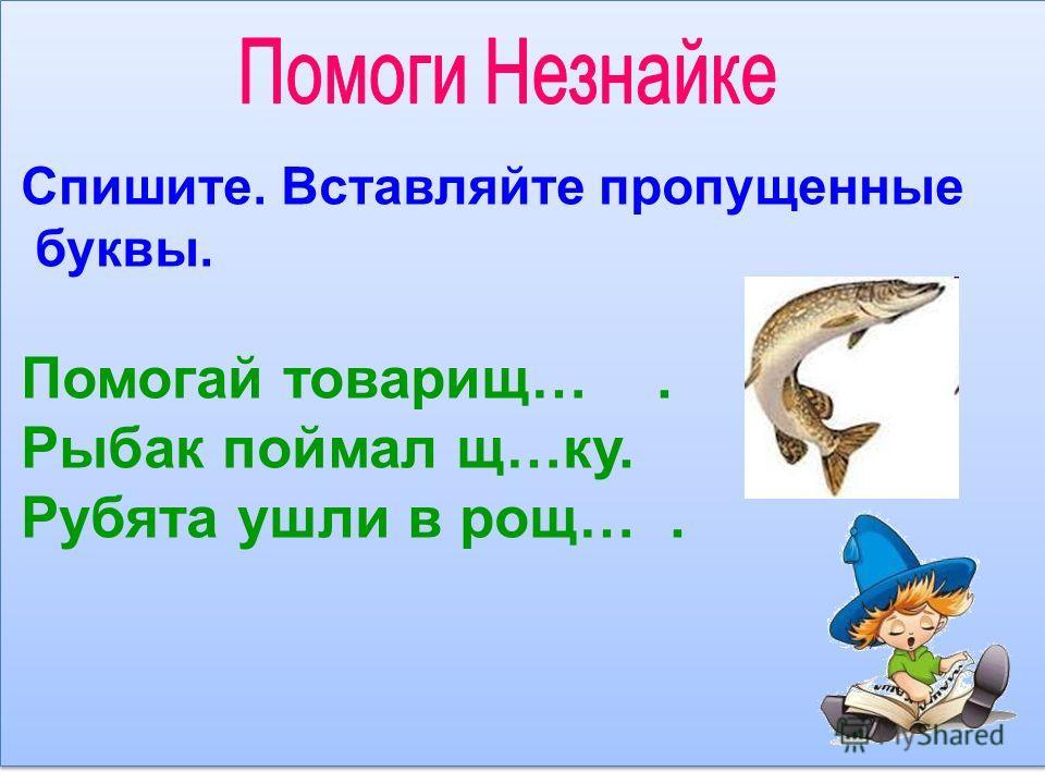 Спишите. Вставляйте пропущенные буквы. Помогай товарищ…. Рыбак поймал щ…ку. Рубята ушли в рощ….