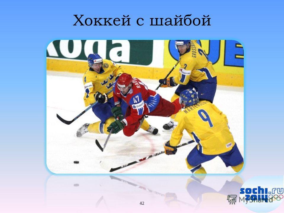 Хоккей с шайбой 42