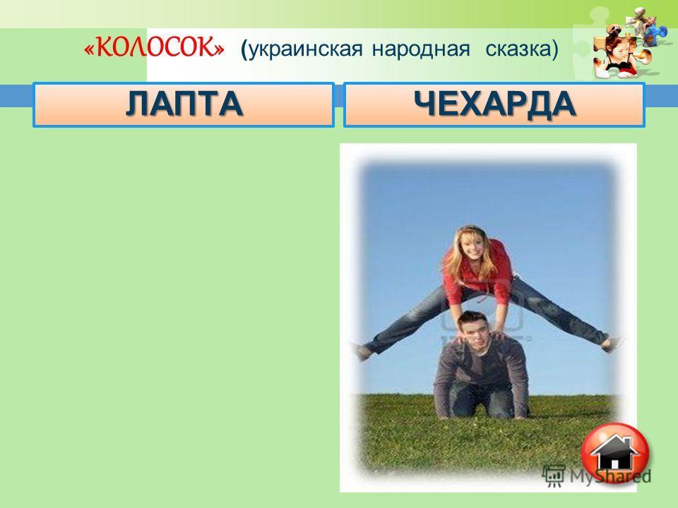 «КОЛОСОК» (украинская народная сказка) ЛАПТАЧЕХАРДА