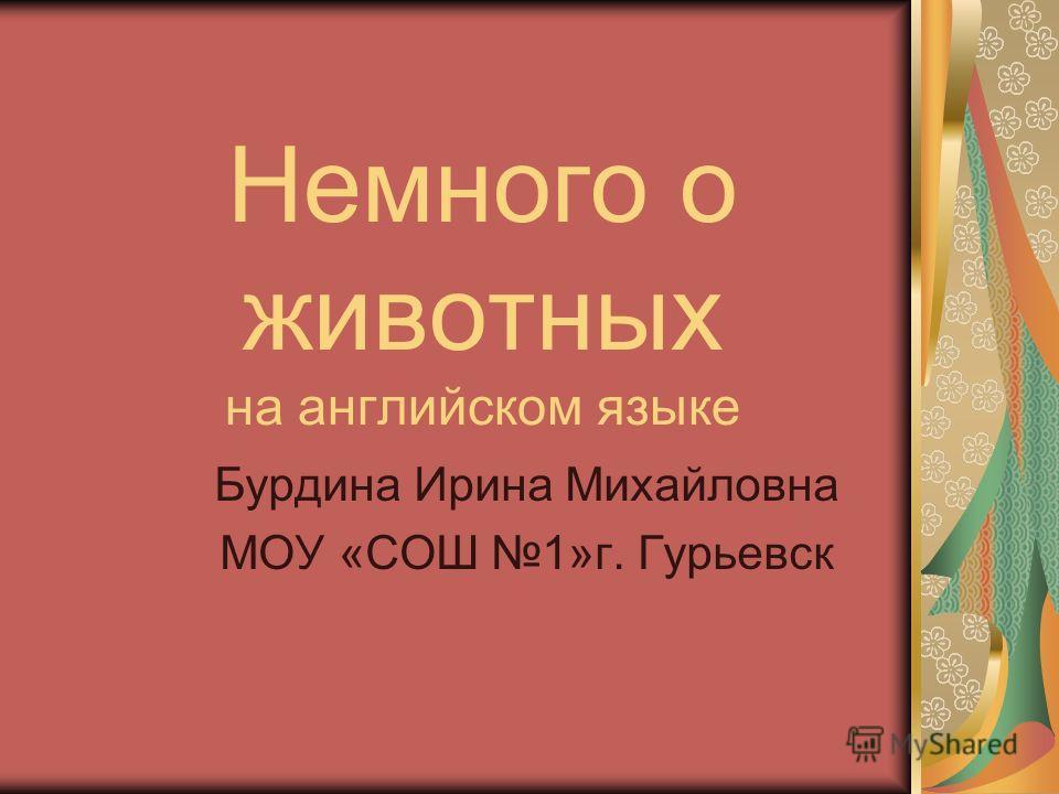 Немного о животных на английском языке Бурдина Ирина Михайловна МОУ «СОШ 1»г. Гурьевск